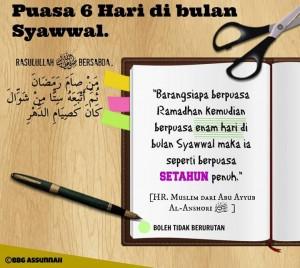 Puasa Syawwal